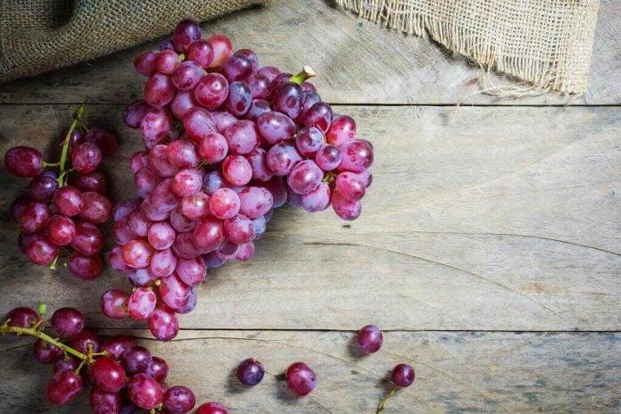 Doktersehat-manfaat-buah-anggur