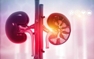 Sindrom Hemolitik Uremik: Gejala, Penyebab, Cara Mengobati, dll
