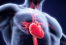 doktersehat-jantung