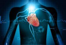 doktersehat-serangan-jantung-arginine-sehat-heart-attack-1024