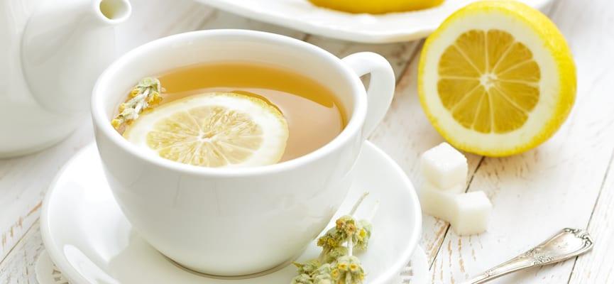 Makanan Probiotik Yang Baik Bagi Kesehatan Tubuh