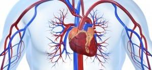 doktersehat-Aneurisma-jantung-aorta