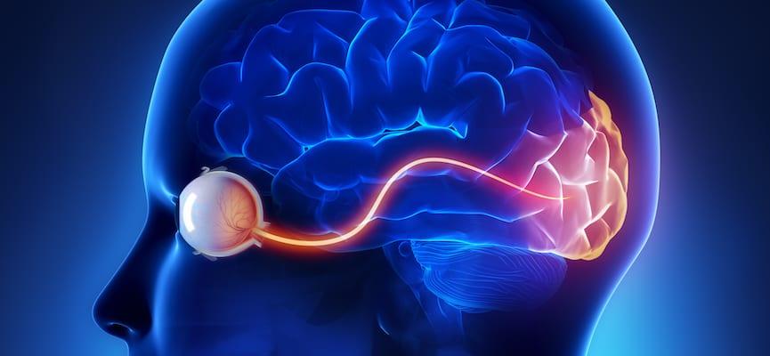 doktersehat-mata-otak
