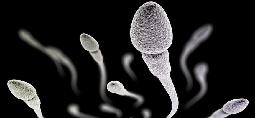 manfaat menelan sperma bagi wanita