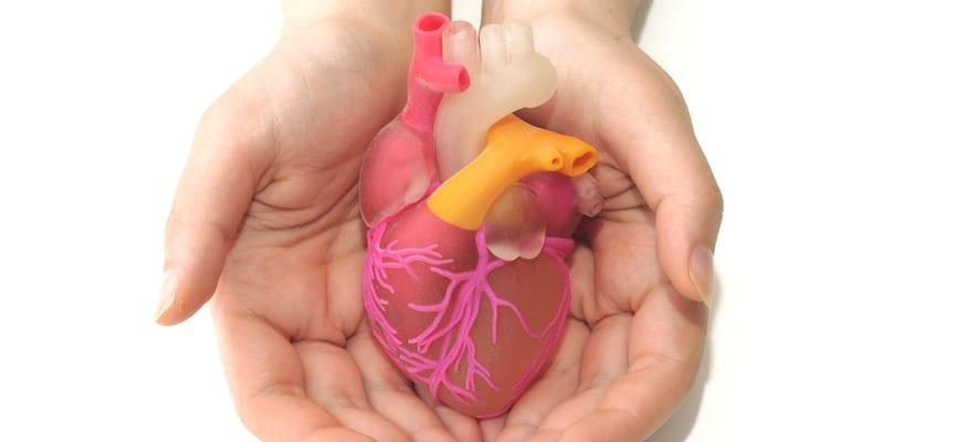 doktersehat-kesehatan-jantung
