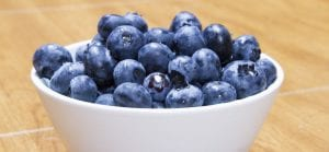 doktersehat-blueberry