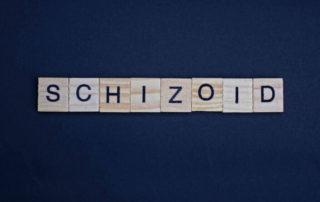Skizoid: Ciri-Ciri, Penyebab, Pengobatan, dll