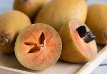 Doktersehat-manfaat-buah-sawo