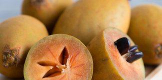 manfaat-buah-sawo-doktersehat