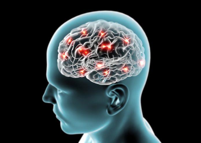 doktersehat-otak