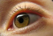 Doktersehat - Mata