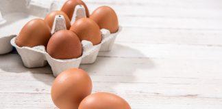 doktersehat-telur