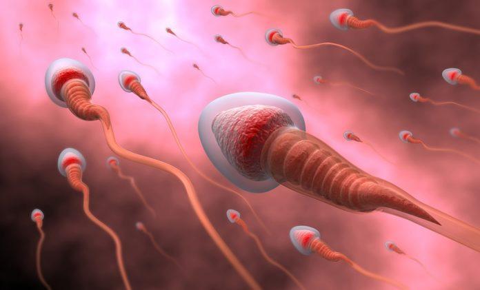 doktersehat warna sperma