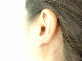 doktersehat_telinga