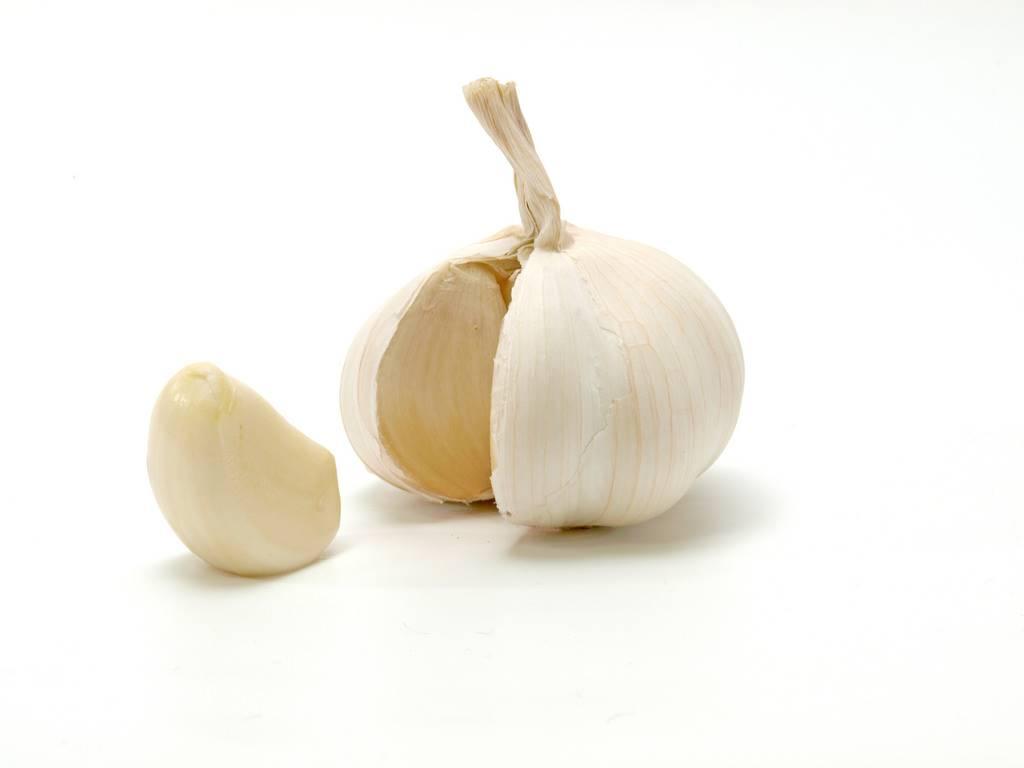 Bawang-putih-diet-doktersehat-1
