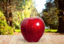 dampak-cuka-apel-doktersehat-1