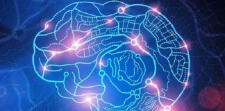 cara-melatih-otak-doktersehat