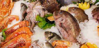beberapa-seafood-yang-aman-untuk-anak-doktersehat