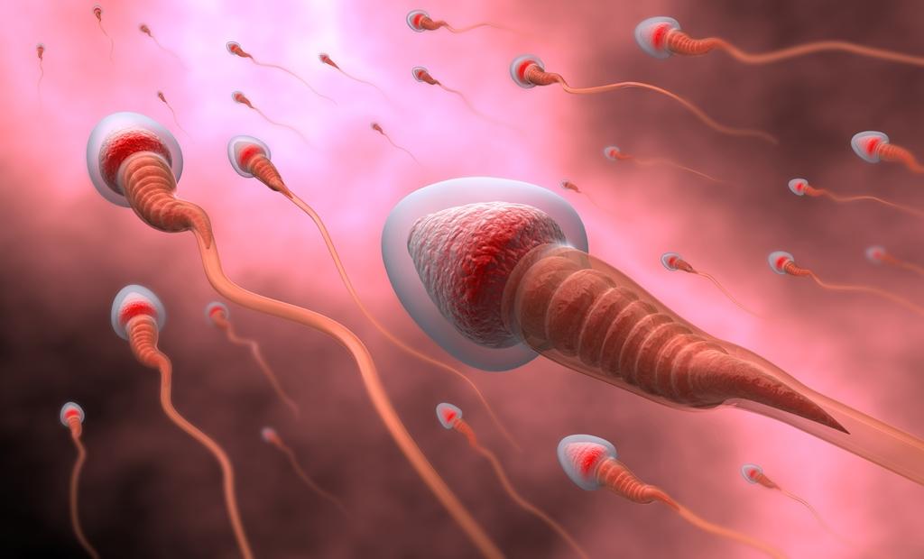 doktersehat motilitas sperma