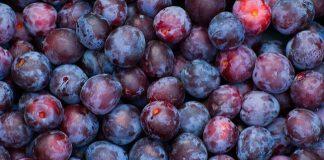 Doktersehat-manfaat-buah-plum