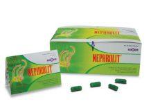 nephrolit-doktersehat