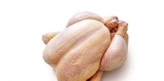 bahaya-ayam-broiler-doktersehat