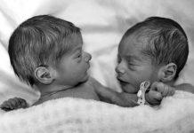 bayi-kembar-doktersehat