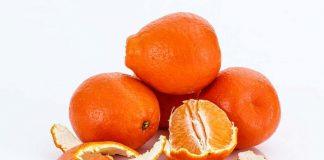 jeruk-doktersehat