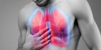 letak-paru-paru-doktersehat