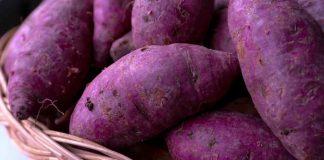 kreasi-masakan-berbahan-ubi-ungu-doktersehat
