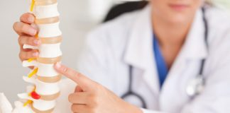 bagian-bagian-sumsum-tulang-belakang-doktersehat