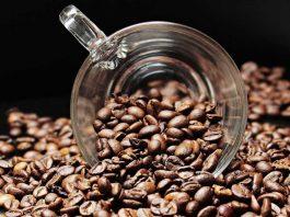 alergi-kopi-doktersehat