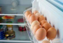 menyimpan-telur-di-kulkas-doktersehat
