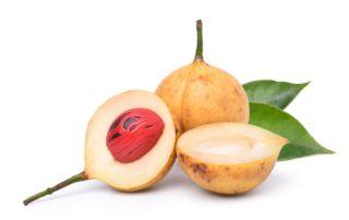 manfaat-buah pala-doktersehat