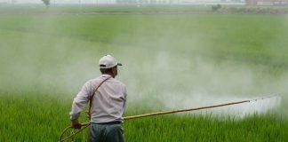 bahaya-pestisida-doktersehat