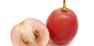 manfaat-biji-anggur-doktersehat