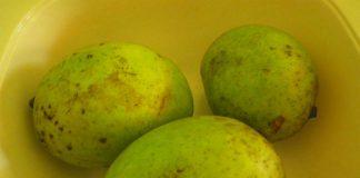 manfaat-buah-bacang-doktersehat