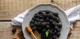 manfaat-buah-blackberry-doktersehat