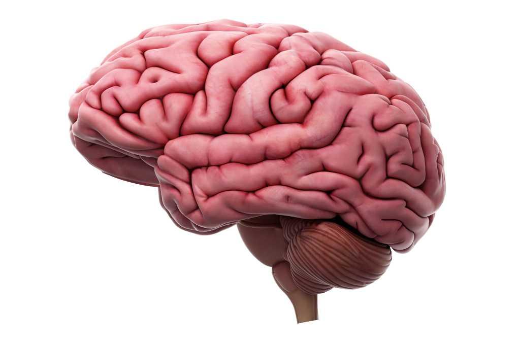 Herniasi Otak: Penyebab, Gejala, Pengobatan, Pencegahan, dll