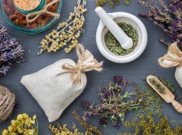 tanaman-obat-kelutanaman-obat-keluarga-doktersehatarga-dooktersehat