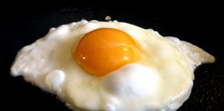 telur-doktersehat