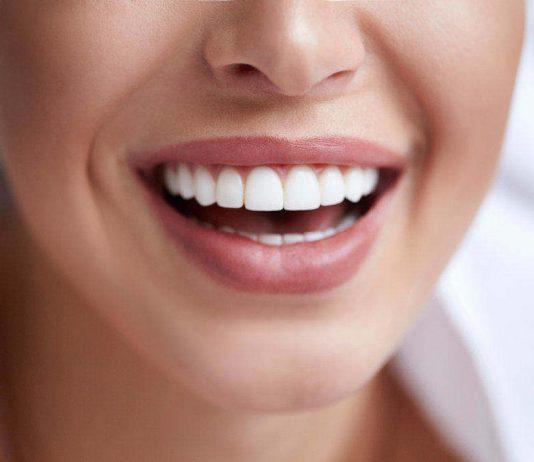 anatomi-mulut-doktersehat
