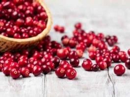 manfaat cranberry-doktersehat