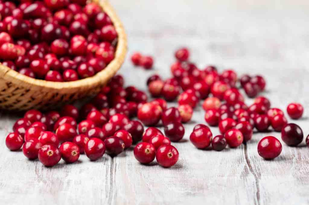 11 Manfaat Cranberry untuk Kesehatan dan Kandungan Nutrisinya