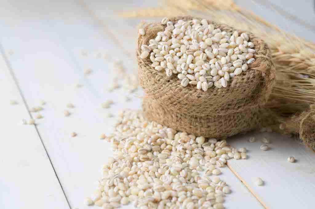 manfaat-barley-doktersehat