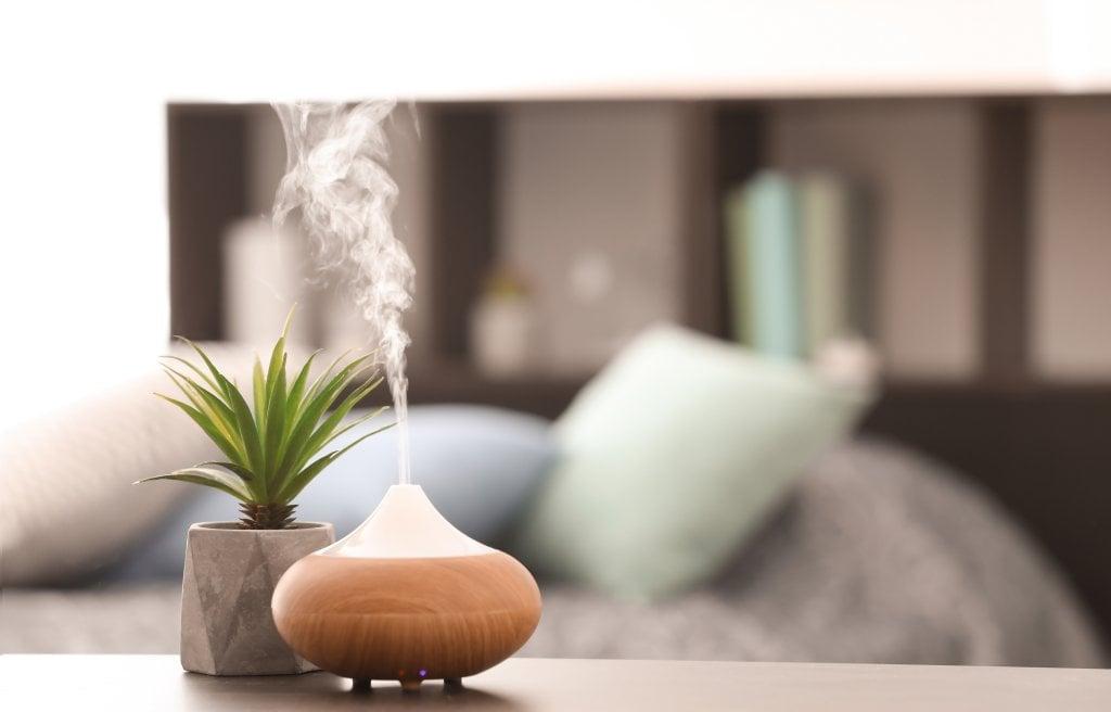 Humidifier (Pelembap Udara): 8 Fungsi, Bahaya, dan Cara Membersihkan