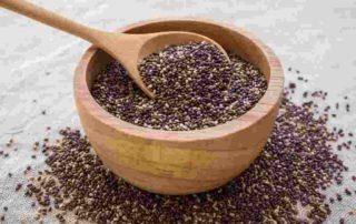 10 Manfaat Chia Seed untuk Kesehatan yang Harus Anda Tahu